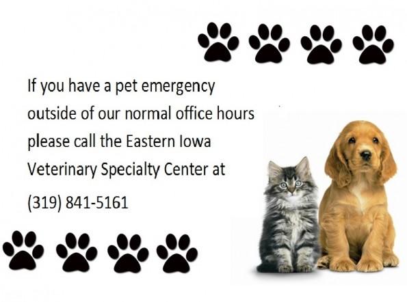emergencyinfo-595x442