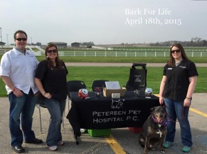 Bark for Life 2015-text